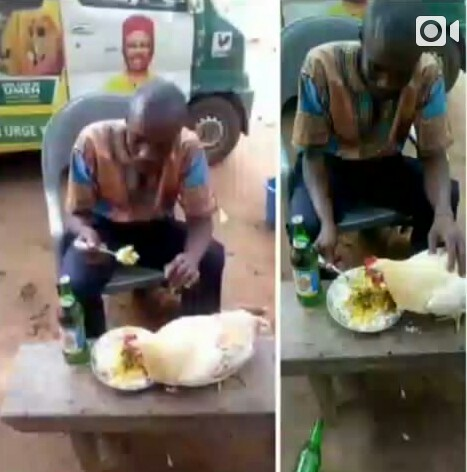 Anambra Man Celebrates APGA Victory With His Fowl (Photo)